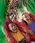 Busch Gardens - Rollercoasters are fun