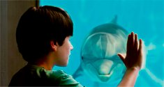 Dolphin Tale - the movie about a dolphin that loses it's tail and is nursed back and has an artificial tail made for her