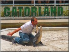 Gatorland Orlando - Massive Alligators at the Alligator Capital of the World