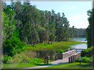 Lake Louisa State Park - Boardwalk, great walks in natural Florida wilderness