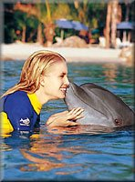 Discovery Cove - Swim with Dolphins