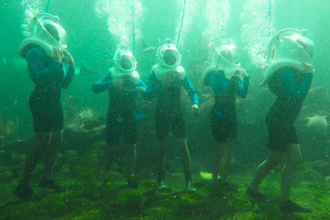 Miami Seaquarium New Sea Trek Helmet Diving