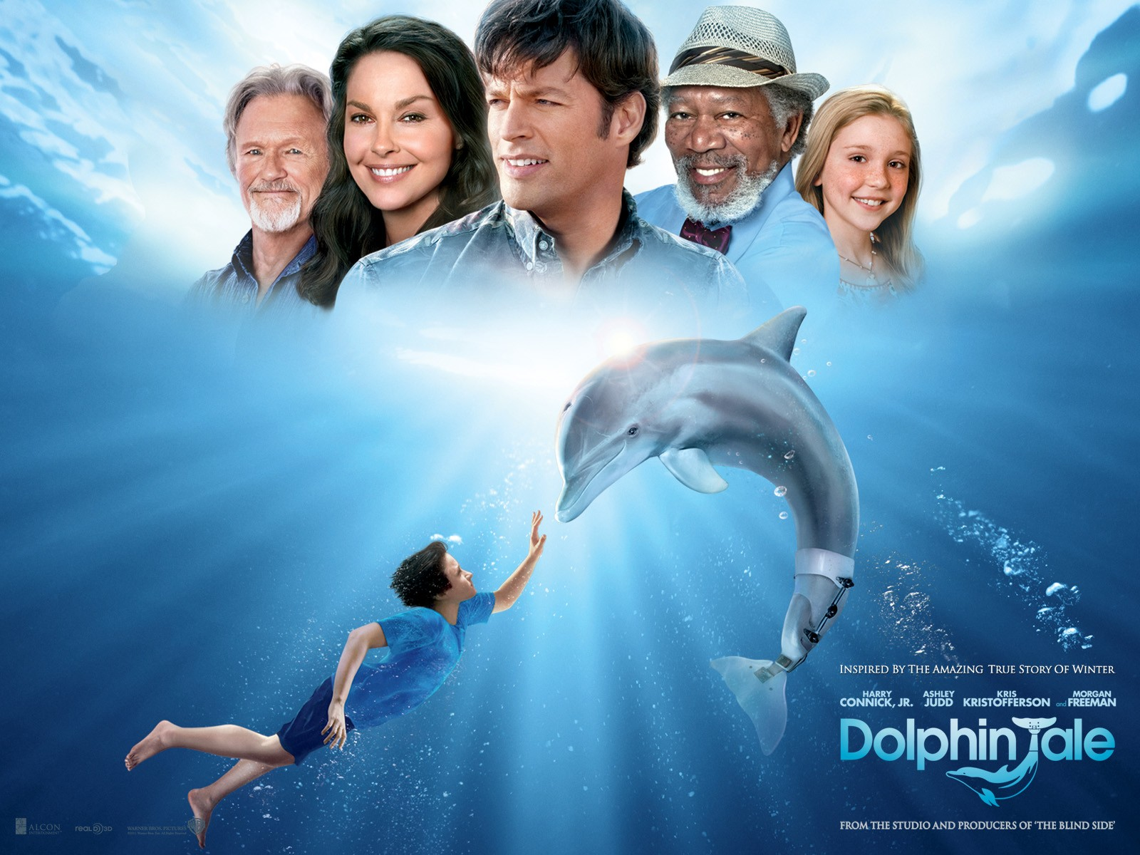 guess what today is the 2nd anniversary of dolphin tale