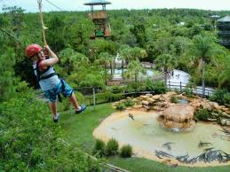 Gator Land Zip Wire