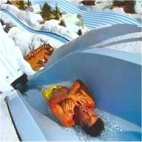 Disney Blizzard Beach Summit Plummet