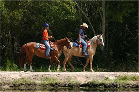 Riding horses in outback at Horse World