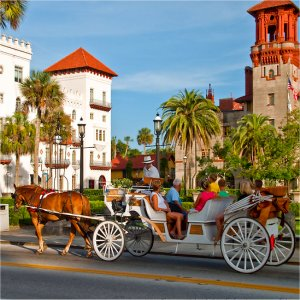 Explore St Augustine by Horse & Carriage