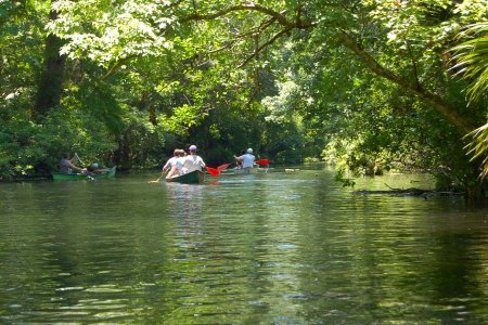 Canoeing at Wekiva Island
