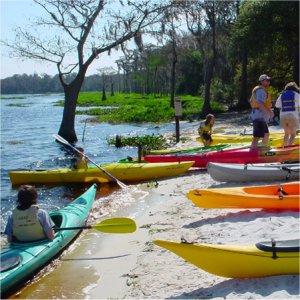 Canoeing at Lake Louisa State Park
