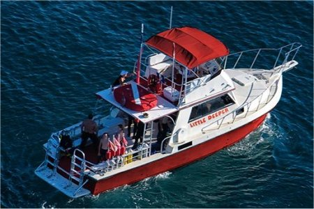Little Deeper Dive Charters