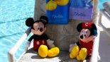 Mickey & Minnie enjoying the sun from Monterey 2 Villa for rent in Orlando