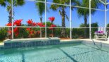 Villa rentals in Orlando, check out the Attractive planting by pool