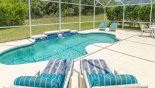 Villa rentals near Disney direct with owner, check out the Private pool with conservation view