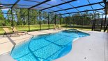 Villa rentals near Disney direct with owner, check out the Pool area with 4 sun loungers and conservation view