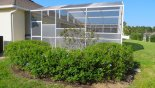 Flowering bushes flank the pool cage with this Orlando Villa for rent direct from owner