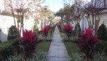 Walkway with this Orlando Townhouse for rent direct from owner