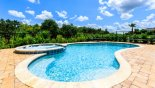 South-east facing pool & spa with private conservation views from Positano 1 Villa for rent in Orlando