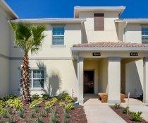 Beach Palm 7