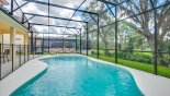 Villa rentals near Disney direct with owner, check out the View of pool deck and mature Floridian treescape behind