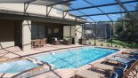 Villa rentals near Disney direct with owner, check out the View of covered lanai from sun loungers